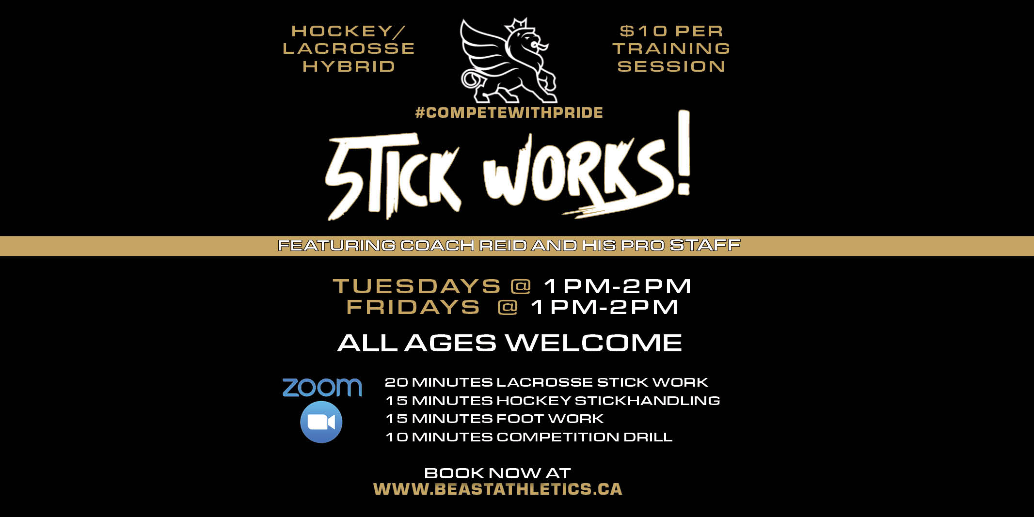Stick Handling Class for Lacrosse and hockey