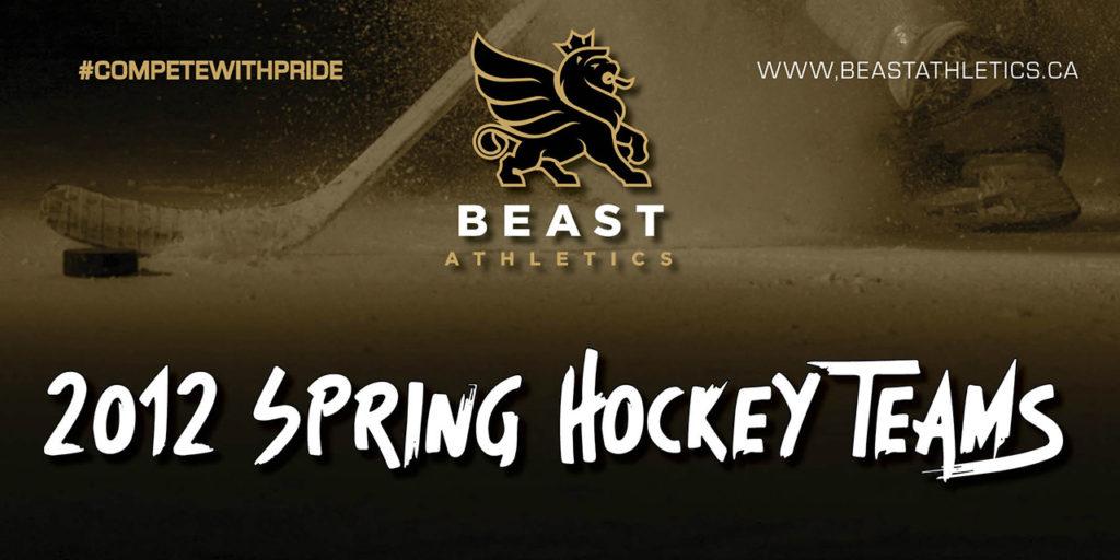 Spring Hockey 2012 BEAST Team