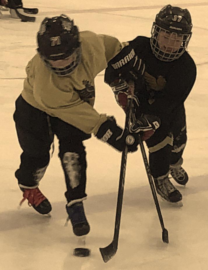 BEAST Spring Hockey Training